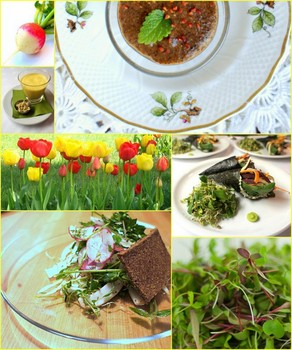Nyers Veg�n �nyenc vacsor�k �prilisban is! / Raw Vegan Gourmet dinners in April also!